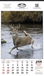 White Tailed Deer Wildlife Calendar, Single Image, Size 12x20.5