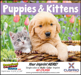 Puppies & Kittens Promotional Calendar 2019 Stapled