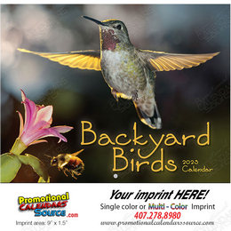 Backyard Birds Promotional Calendar 2019 Stapled