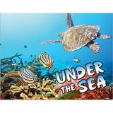 Under The Sea Promotional Mini Custom Calendar