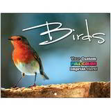 Birds Promotional Custom Calendar