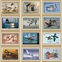 Duck Stamp Promotional Calendar 2015