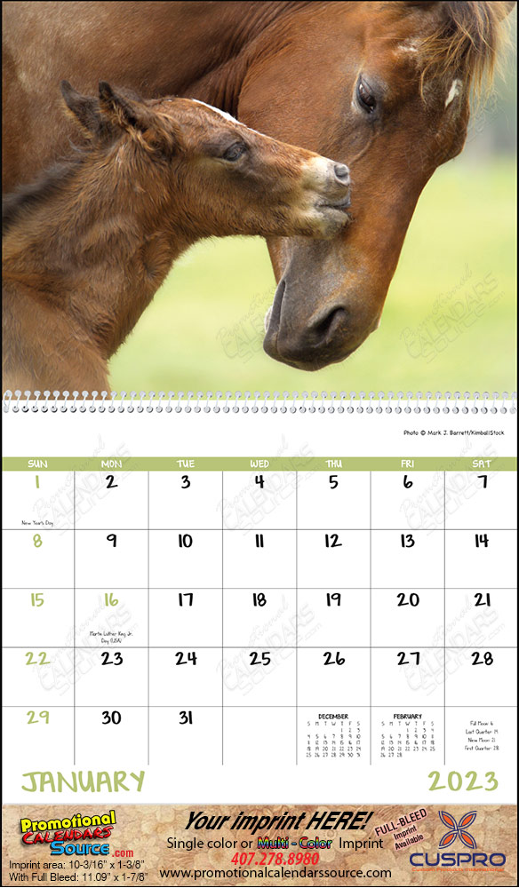 Baby Farm Animals Promotional Calendar 2017 Spiral