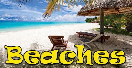 Beach Themed calendars custom printed.